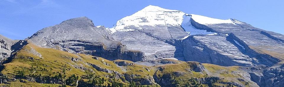 Berner Oberländer OL